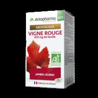 Arkogélules Vigne Rouge Bio Gélules Fl/45 à Blere