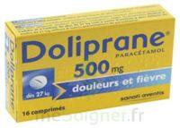 Doliprane 500 Mg Comprimés 2plq/8 (16) à Blere