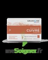 Granions De Cuivre 0,3 Mg/2 Ml S Buv 30amp/2ml à Blere
