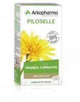 Arkogélules Piloselle Gélules Fl/45 à Blere