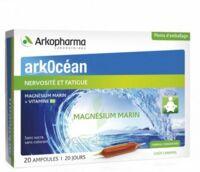 Arkocean Magnesium Marin Solution Buvable Caramel 20 Ampoules/10ml à Blere