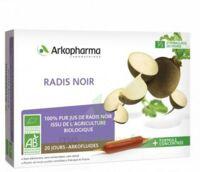 Arkofluide Bio Ultraextract Radis Noir Solution Buvable 20 Ampoules/10ml à Blere