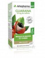 Arkogélules Guarana Bio Gélules Fl/45 à Blere