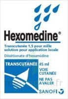 Hexomedine Transcutanee 1,5 Pour Mille, Solution Pour Application Locale à Blere