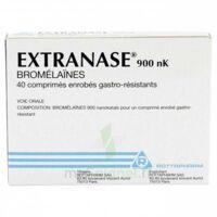 Extranase 900 Nk, Comprimé Enrobé Gastro-résistant à Blere