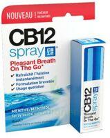 Cb 12 Spray Haleine Fraîche 15ml à Blere