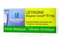 Cetirizine Biogaran Conseil 10 Mg, Comprimé Pelliculé Sécable à Blere