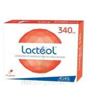 Lacteol 340 Mg, 10 Gélules à Blere
