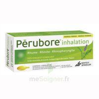 Perubore Caps Inhalation Par Vapeur Inhalation Plq/15 à Blere