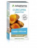 Arkogelules Curcuma Pipérine Gélules Fl/45 à Blere