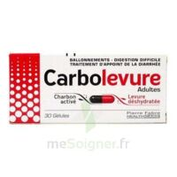 Carbolevure Gélules Adulte Plq/30 à Blere