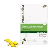 Aromaforce Caps Inhalation Bio B/15 + Inhalateur à Blere