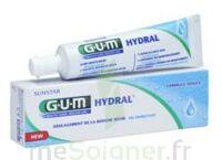 Gum Hydral Gel, Tube 75 Ml à Blere