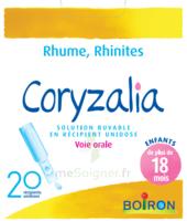 Boiron Coryzalia Solution Buvable Unidose B/20 à Blere