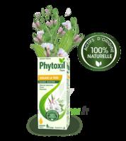 Phytoxil Toux Sans Sucre Sirop Adulte Enfant +2 Ans Fl/120ml à Blere