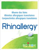 Boiron Rhinallergy Comprimés B/40 à Blere