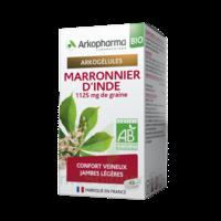 Arkogélules Marronnier D'inde Bio Gélules Fl/45 à Blere