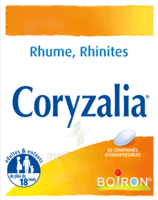 Boiron Coryzalia Comprimés Orodispersibles à Blere