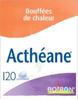 Boiron Acthéane Comprimés B/120 à Blere